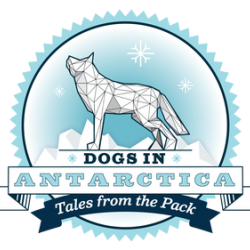 Dogs in Antarctica: Tales from the Pack